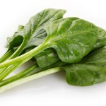 Fresh Spinach Is Safe to Eat, Says FDA