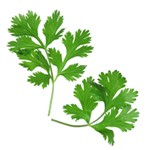 6 Health Benefits of Parsley