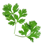 facts about parsley