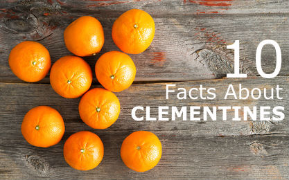 10 Facts About Clementines