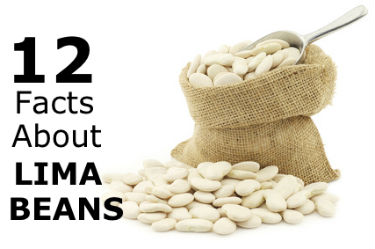 12 Facts About Lima Beans