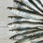 6 Health Benefits of Sardines