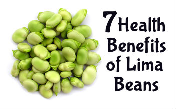 7 Health Benefits of Lima Beans