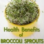 7 Health Benefits of Broccoli Sprouts