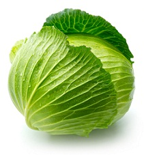 cabbage-sm1