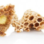 10 Health Benefits of Royal Jelly