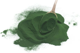 Side Effects of Spirulina